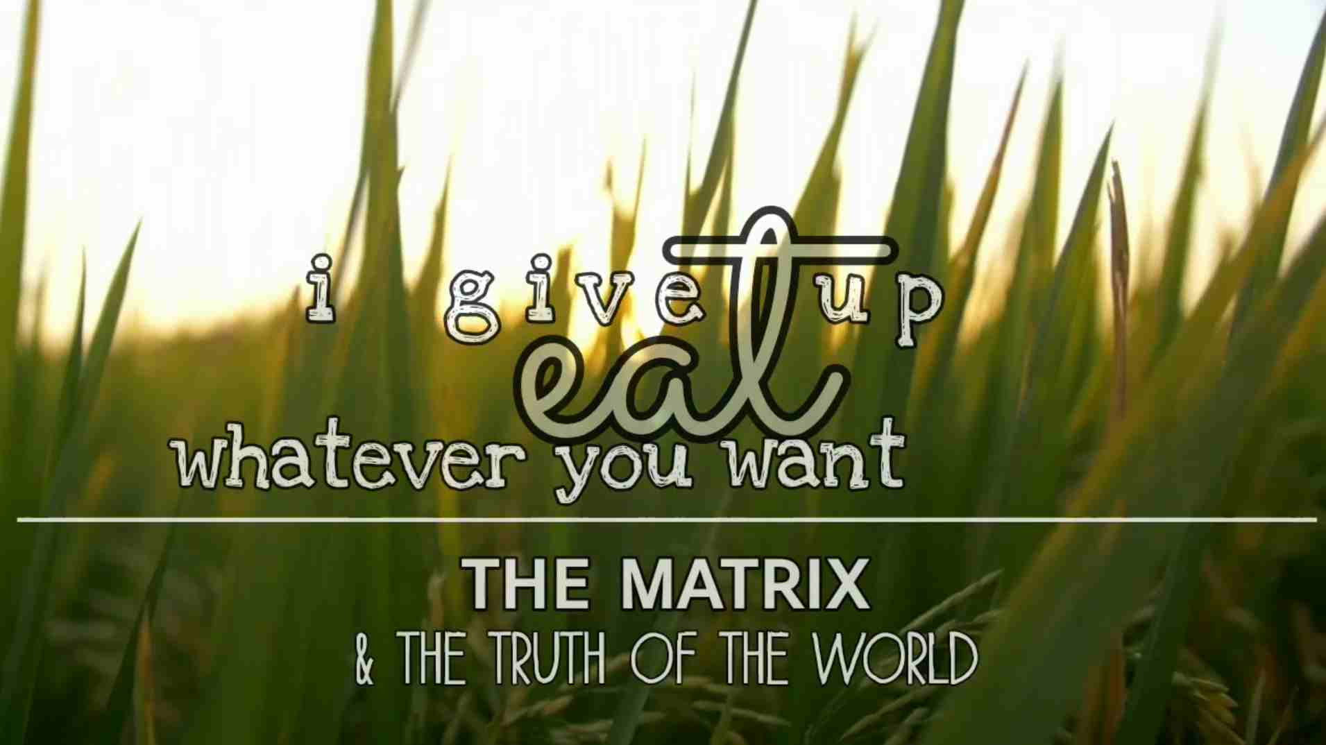 I Give Up. Eat Whatever You Want: The Matrix & the Truth of the World (2020)
